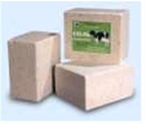 Buy Salt in briquettes for animals