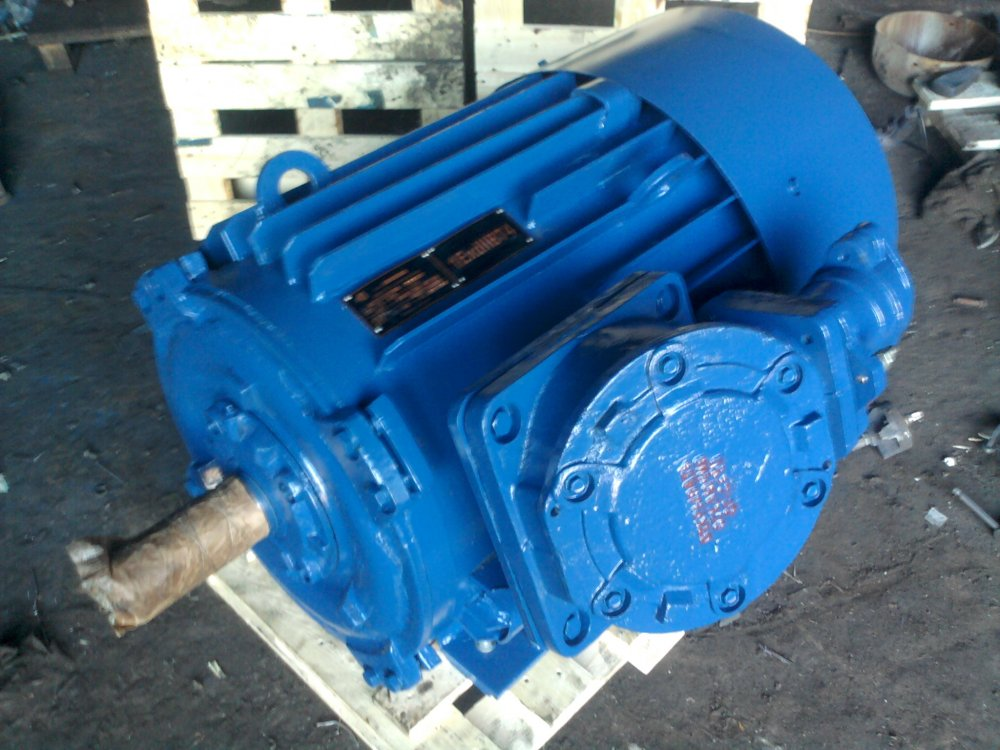 Buy Electric motors explosion-proof 75 kW 3000 RPM