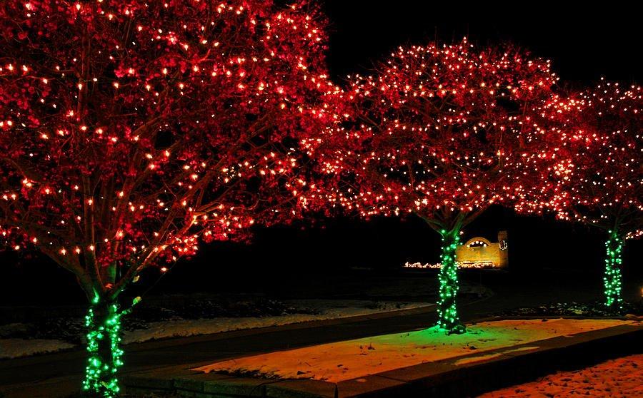 нет, гирлянды на деревья светодиодные фото необходимы для того