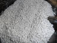 Купить Пластик АБС гранула(белый) для литья+экструзия.марка LG, HF380