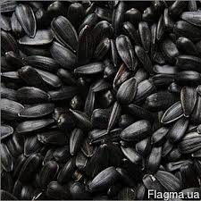 Семечки подсолнуха, Sunflower Seeds/900 USD