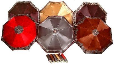Buy Female umbrella (full automatic machine) of DOPPLER (74665GFGGR)