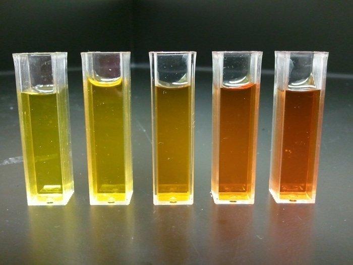 Протеоза фото