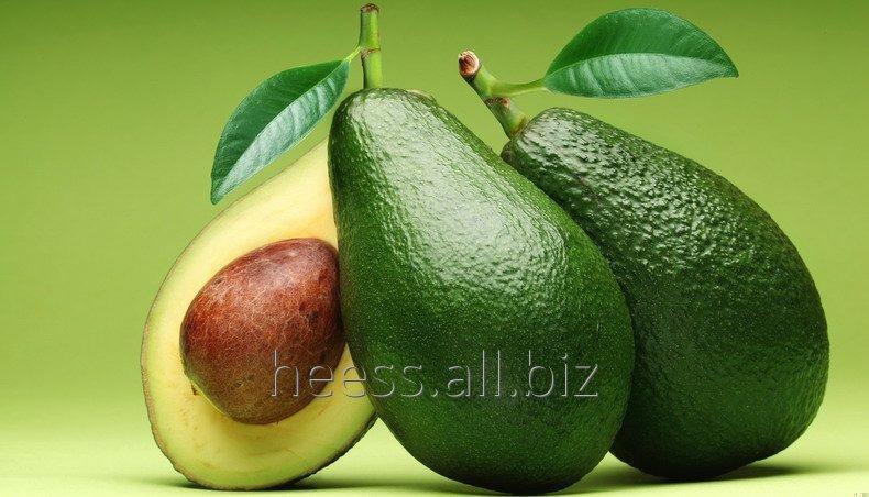 Масло авокадо водорастворимое, ВРМ авокадо от  1 кг