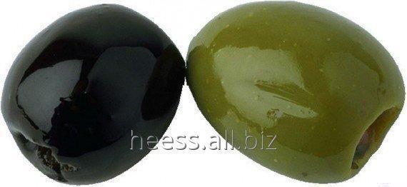 Масло оливковое водорастворимое, ВРМ оливка от 1 кг