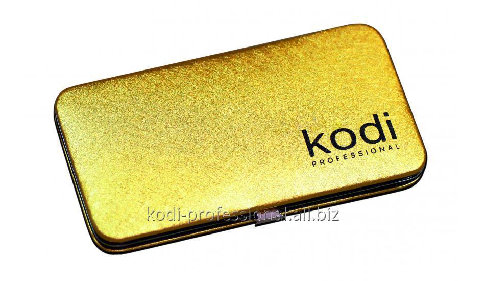 Футляр для пинцетов Kodi professional, цвет Золото