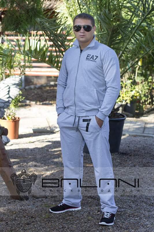 Чоловічий одяг Чоловічий спорт костюм Armani (358 ДП)  ясно-сірий ... fc7800b553922