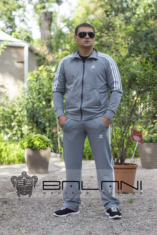 Чоловічий одяг Чоловічий спорт костюм Adidas (711 АР)   ясно-сірий ... 21e6fa9774c96