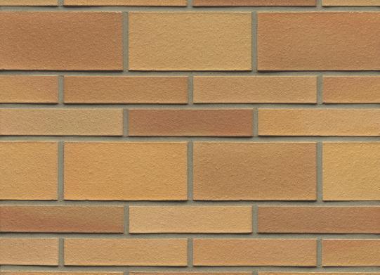 Buy Brick brick DF 06