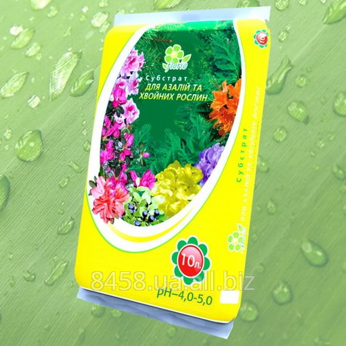 Buy Substratum for azaleas and coniferous plants of 10 l