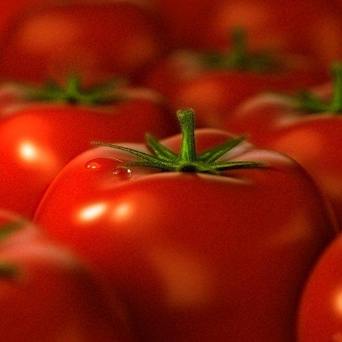 La pâte aux tomates