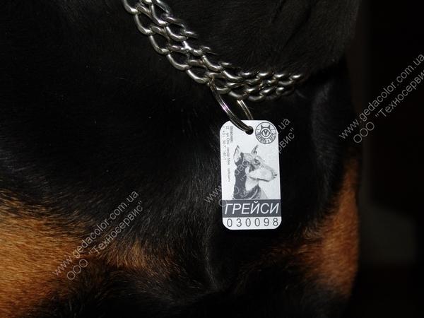 Купить Жетоны для собак