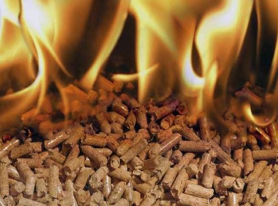 Купить Щепа топливная по договорной цене