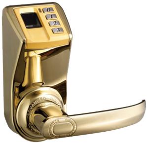 Buy Biometrichny ADEL DIY-3398 lock