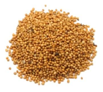 Купить Горчица семена