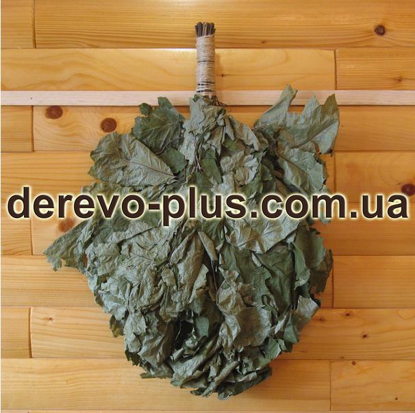 Buy Broom the Canadian oak (n) on 20 pieces