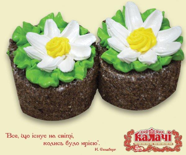 Ромашка, пирожные опт от производителя, кондитерское предприятие КАЛАЧИ
