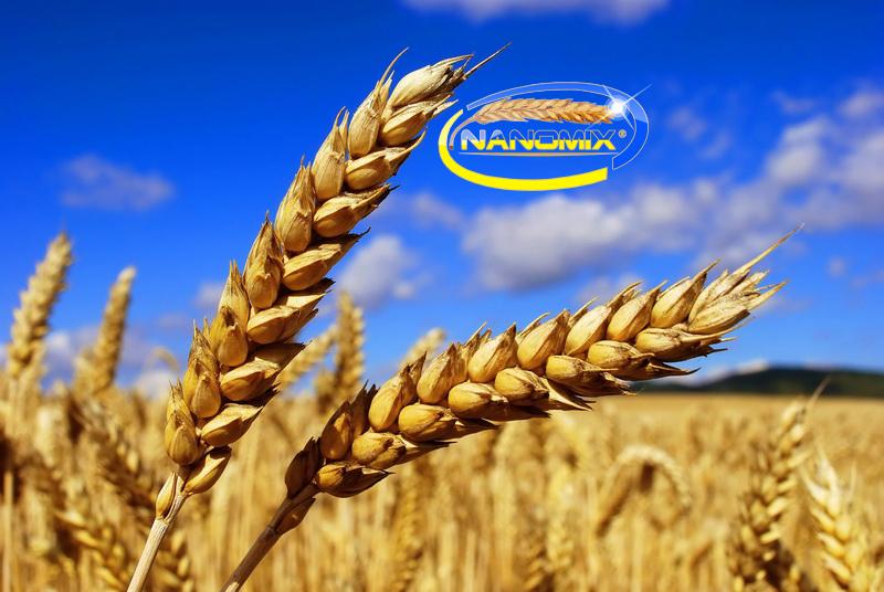 Зерновые-Элита внекорневая подкормка