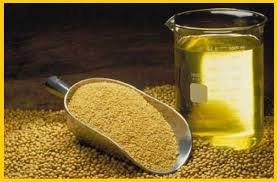 Купить Соевый шрот, сыродавленное масло.
