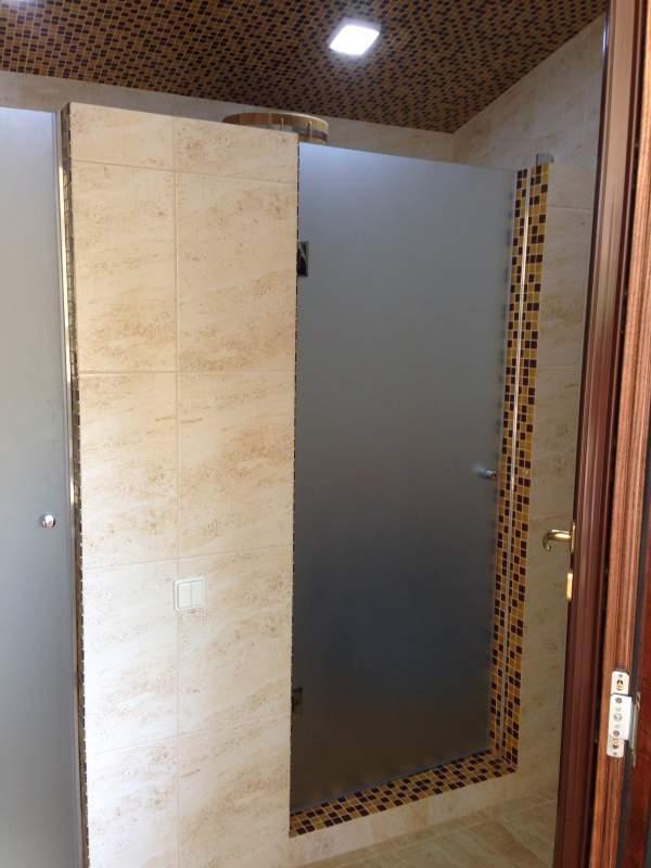 Дверь в душевую из матированного стекла