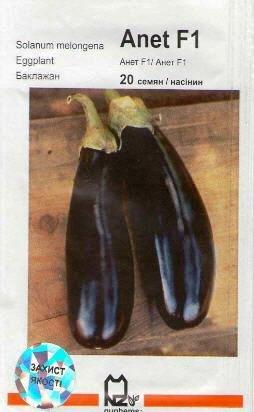 Buy Seeds eggplan