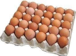 Купить Яйцо куриное