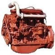 Buy Case oil D21-1401051 (pallet) of the D-21 engine