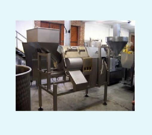 Buy Lines of primary processing of vegetables and fruit, equipment for processing of apples and berries