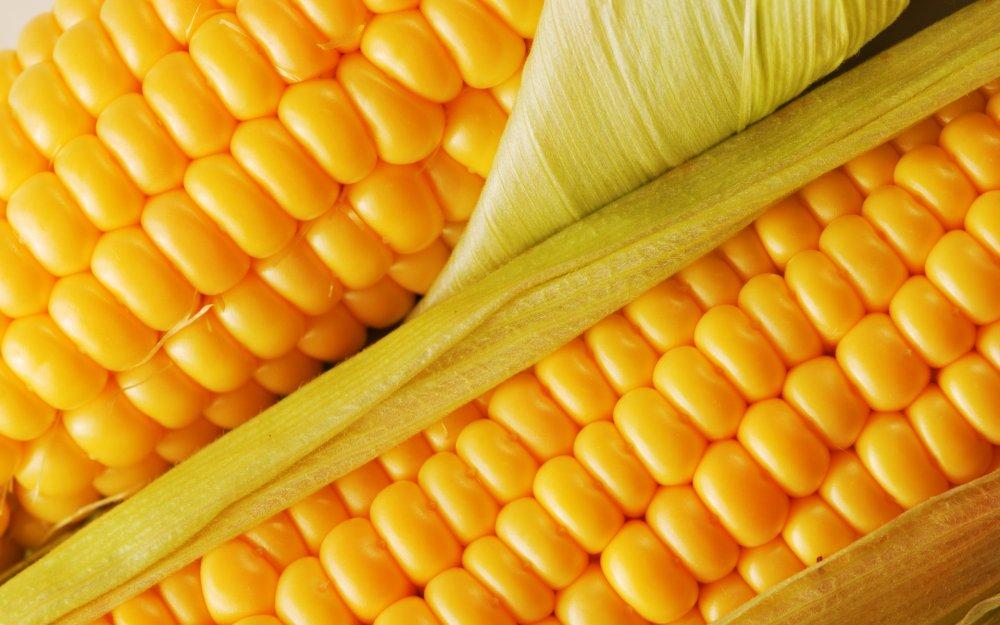 Купить Борошно кукурудзяне