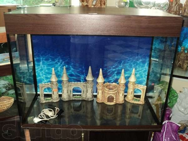 Sale of aquariums of various forms and sizes.
