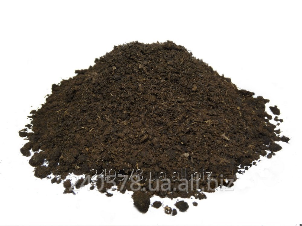Купить Торф экскаваторный для производства покровной почвы