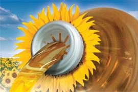 Семена подсолнечника Сингента НК Брио - посевной материал