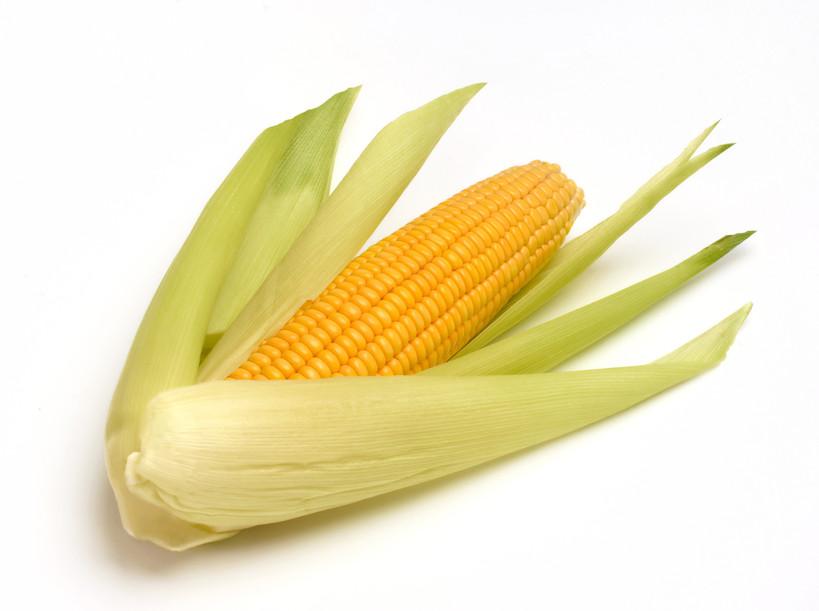 Кукуруза сорт Анамур