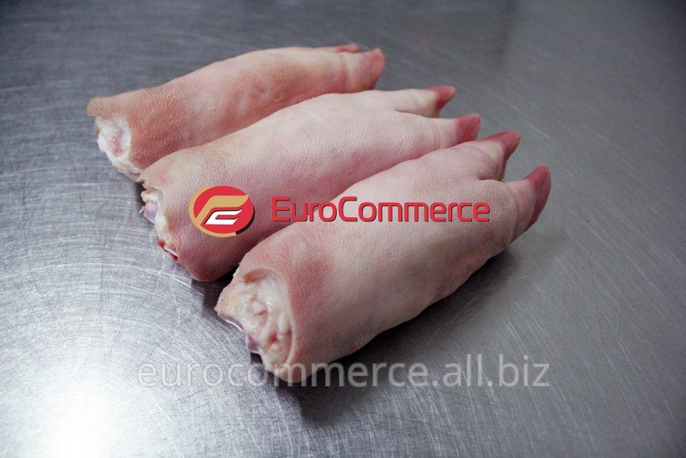 Купить Ноги свиные передние | Pork front feet | Pig front feet