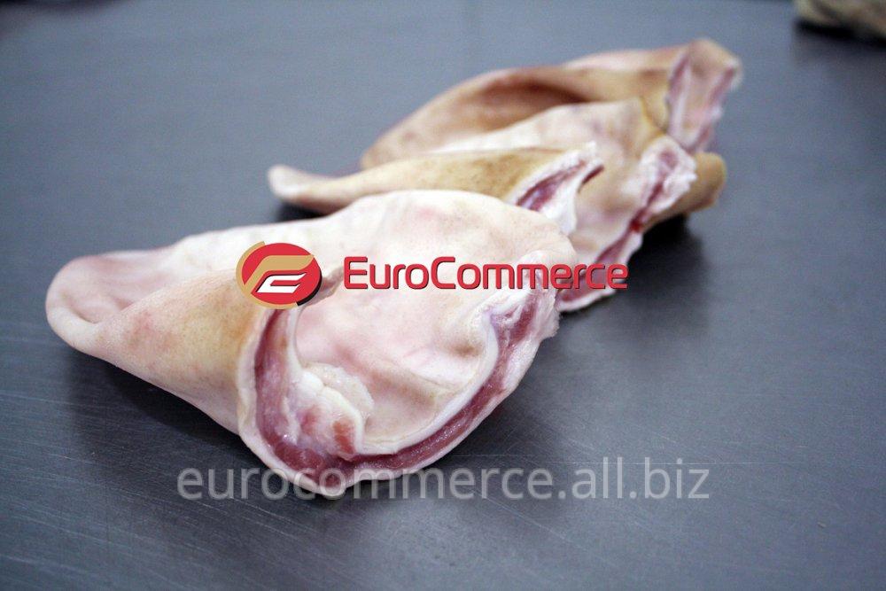 Купить Свиные уши без ракушки