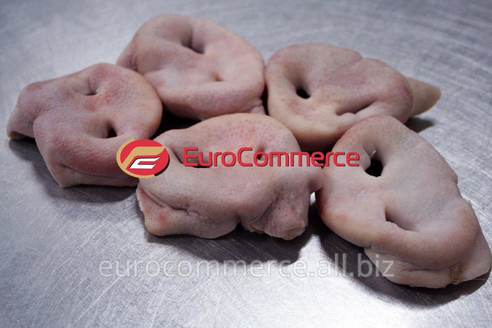 Купить Пятачки свиные