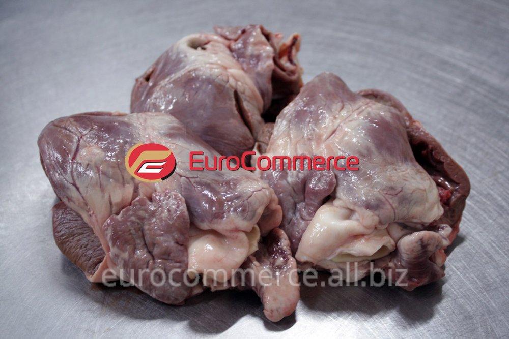 Купить Сердце свиное