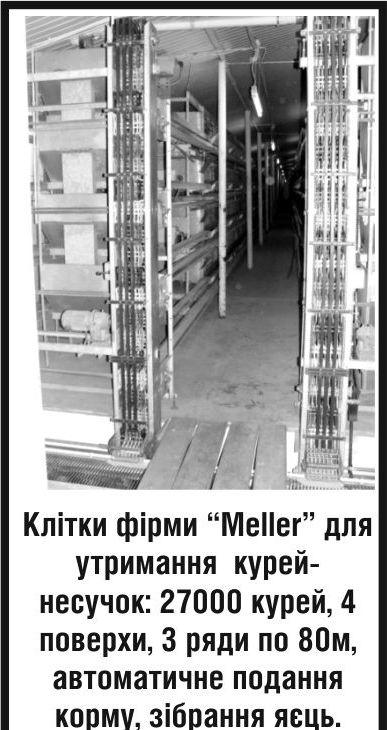 """Купити Клітки фірми """"Meller"""" для змісту курей-несучок."""