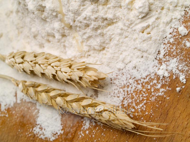 Premium wheat flour