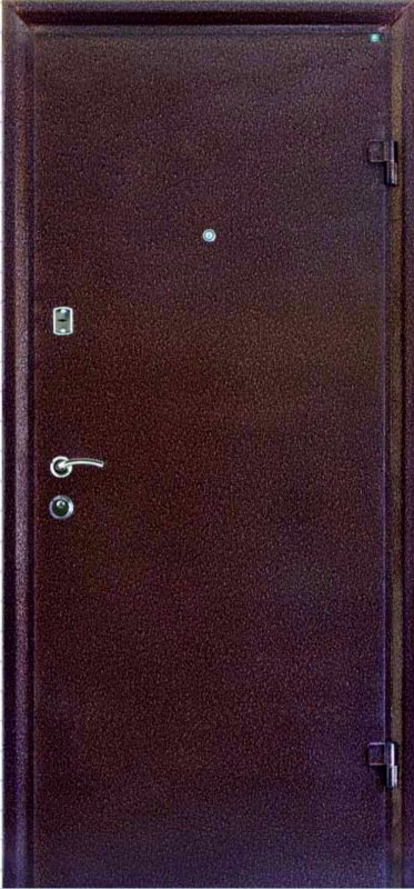 Купить Дверь входная АЛЬФА