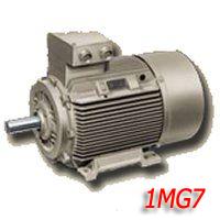 Электродвигатели Siemens типа 1MG7