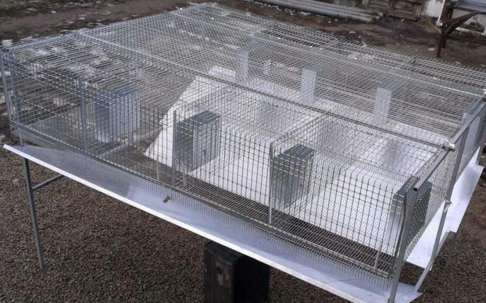 Buy Cages for rabbits metal