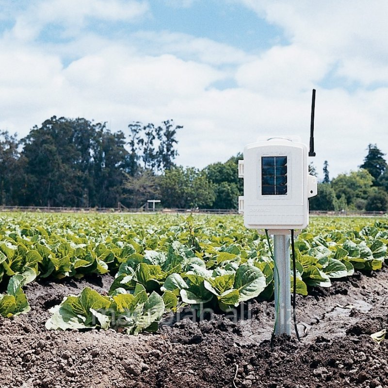 Soil meteorological station of Davis