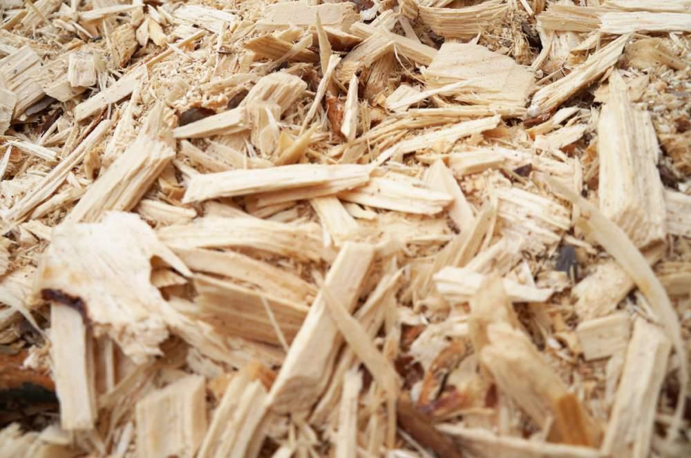Купить Щепа древесная от производителя