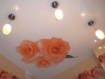 Натяжной потолок с фотопечатью в ванной   338x450