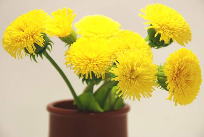 Предметы декора цветы