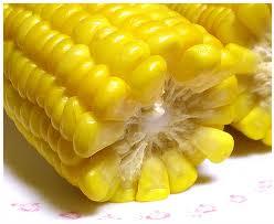 Купить Кукуруза от производителя