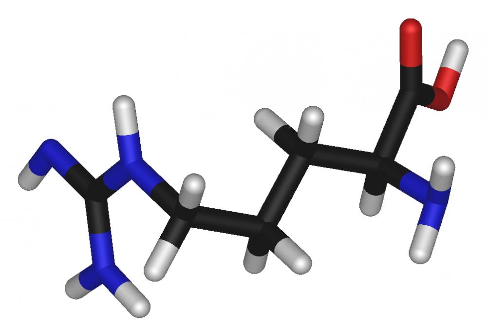 Купить L- аргинин (L-Arginine)