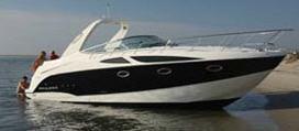Buy Boat Bayliner 335
