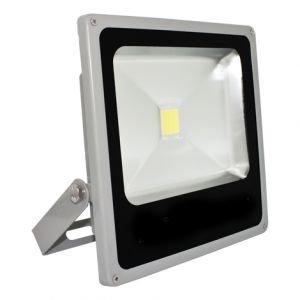 Купити Прожектор 1x30Вт 6500 ДО LED Feron (LL-273)